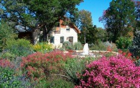 Native Texas Landscaping